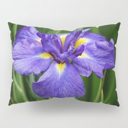 Purple Iris Flower Pillow Sham