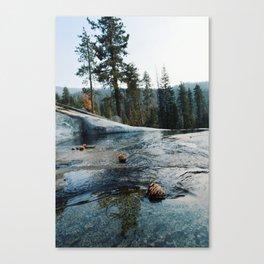 River C Canvas Print
