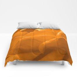 Yellow Rose II Comforters