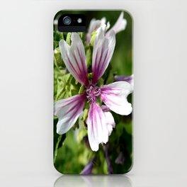 Zebra Mallow Flower iPhone Case
