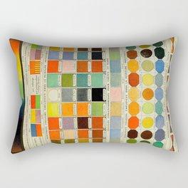 Colors Vintage Scientific Illustration French Language Encyclopedia Lithographs Educational Diagrams Rectangular Pillow