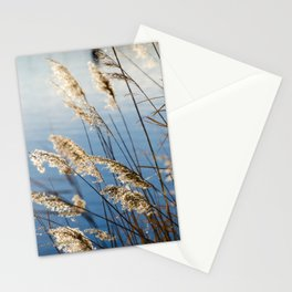 Camargue nature Stationery Cards