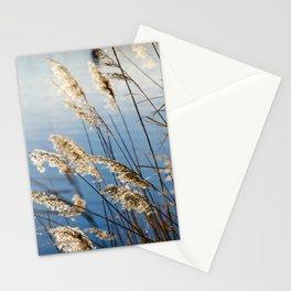 Camargue nature Stationery Cards