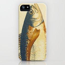 Piscibus 8 iPhone Case