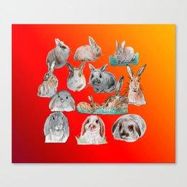 Bunny Mix Canvas Print