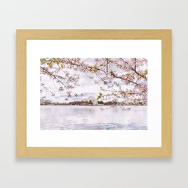 Washington DC Cherry Blossoms - Thomas Jefferson Memorial III Framed Art Print