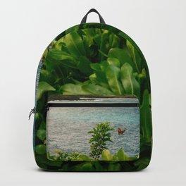 Kilauea Lookout Kauai Hawaii   Tropical Beach Nature Ocean Coastal Travel Photography Print Backpack