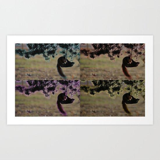 Greedy Squirrel II Art Print