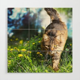 Tabby Cat Stalking Wood Wall Art