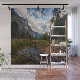In the Valley. Wall Mural