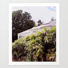 Summer Greenhouse Art Print