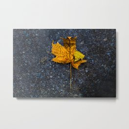 Beautiful Minimalistic Stone-Peng Style Leaf Metal Print