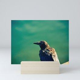 Crow Mini Art Print