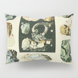 Vintage Minerals Chart Pillow Sham