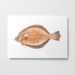 Illustration of Flounder Metal Print