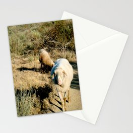A Wild Sheep Chase Stationery Cards