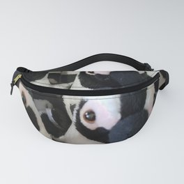 The March of the Penquins Fanny Pack