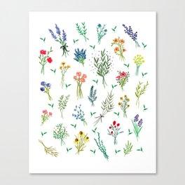 Garden Bouquets Canvas Print