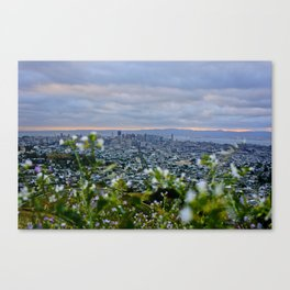 flowers in your hair Canvas Print