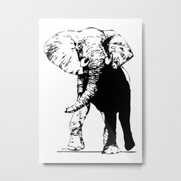 Elephant - M Metal Print