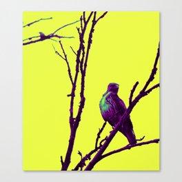 purp hawk Canvas Print