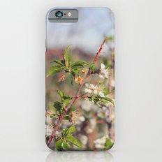 Fields iPhone 6s Slim Case