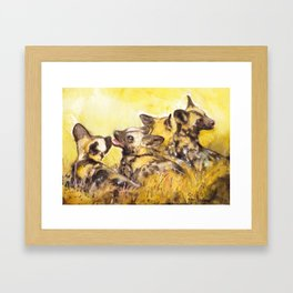 Wild dog pubs Framed Art Print