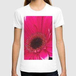 Hot Pink T-shirt