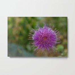 Mountain Flower 2 Metal Print