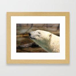 Polar Smiles Framed Art Print