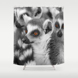 Funny Animals from Madagascar Shower Curtain