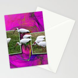Grazing Out OF Frame Stationery Cards