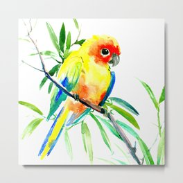 Sun Conure Parakeet, tropical yellow green bird decor Metal Print