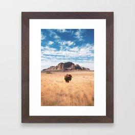 The Lonely Bison, Salt Lake City, Utah-Desert Landscape Framed Art Print