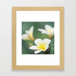 in the happy garden Framed Art Print