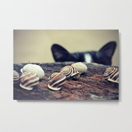 Cat Snails Metal Print