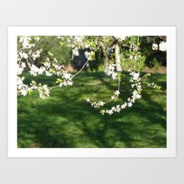 Blossom Series - 1 Art Print