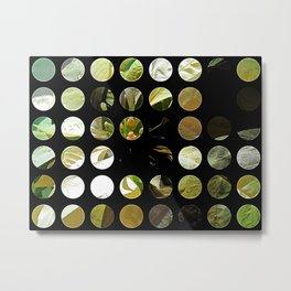 Pale Yellow Poinsettia 1 Art Circles 1 Metal Print