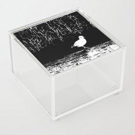 STEP by STEP Acrylic Box