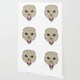 Random Cat Wallpaper