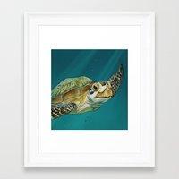 sea turtle Framed Art Prints featuring Sea Turtle by Michelle Kondrich