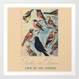 French Birds Art Print