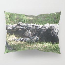 Papa Gator Pillow Sham