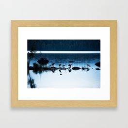 Beautiful Cranes by The Lake - Landscape in Blue hour #decor #society6 #buyart Framed Art Print