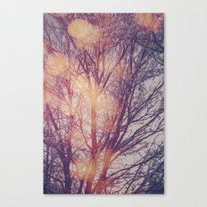All the pretty lights (1) Canvas Print