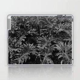 leavs Laptop & iPad Skin