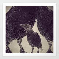 Mr Magpie Art Print