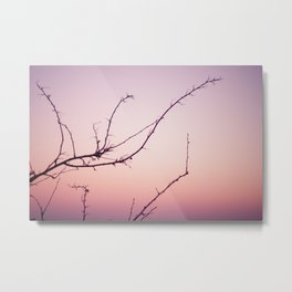 Dusk #purpleart #pinkart #orange #duskphotograph Metal Print