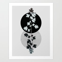 Geometry and Nature II Art Print