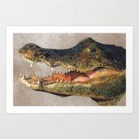crocodile Art Prints featuring Crocodile by Anna Milousheva
